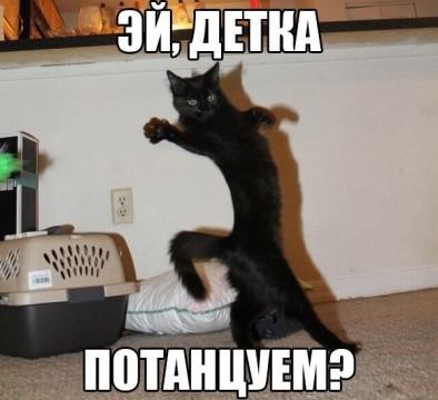 VJFbycho6vM